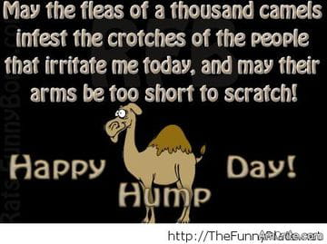 I want you to post happy hump day messages on this post guys gales i want you to post happy hump day messages on this post guys gales lolz my friend dave was the one who introduced me to all this yrs ago on sodahead m4hsunfo
