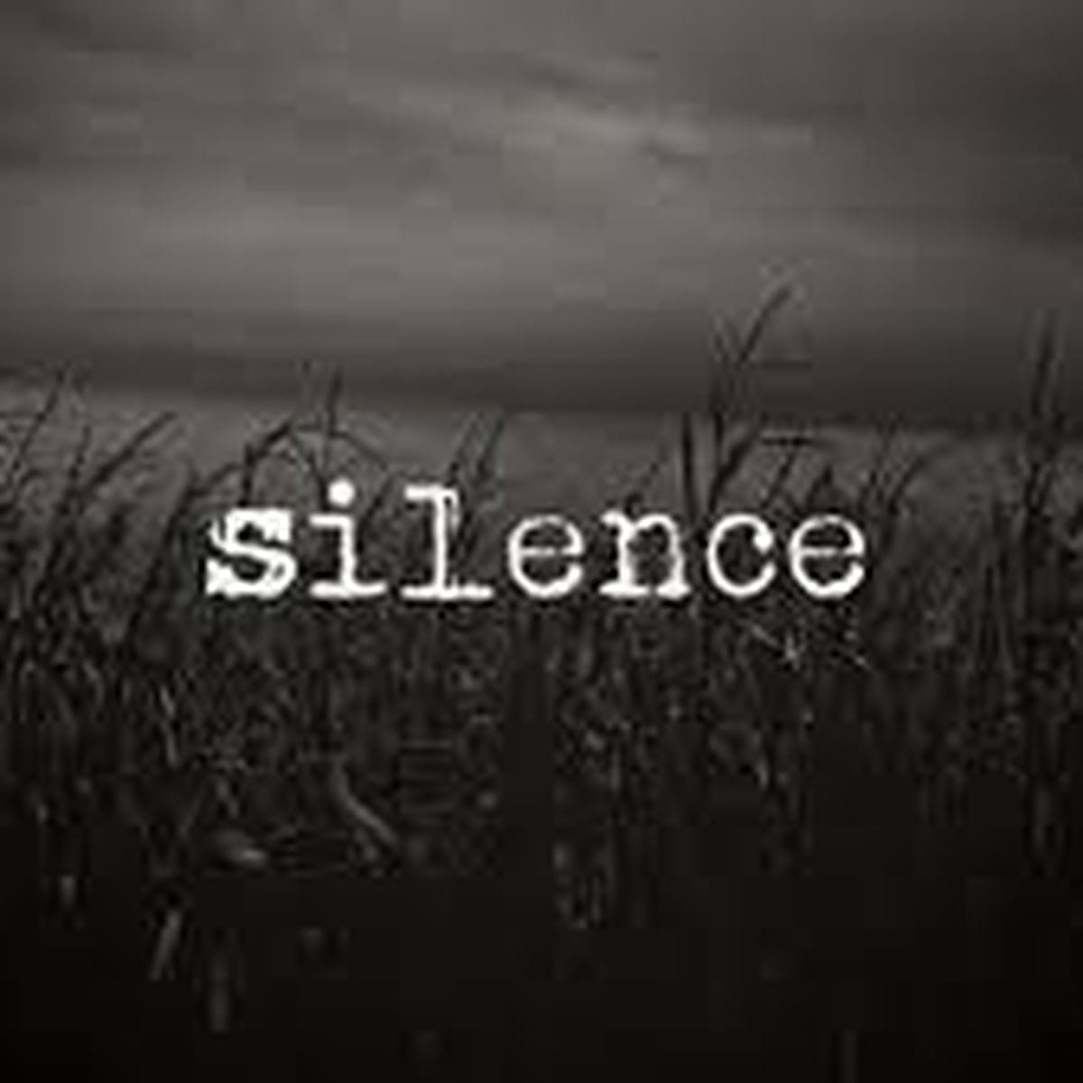 Sometimes Not Saying Anything Is The Best Answer You See Silence Can Never Be Misquoted Unknown Amirite